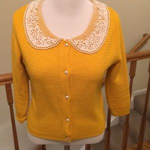 Gorgeous spring sweater